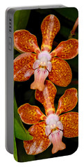 Orchid 450 Portable Battery Charger