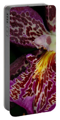 Orchid 459 Portable Battery Charger