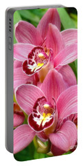 Portable Battery Charger featuring the photograph Orchid Twins Up Close by Sue Melvin