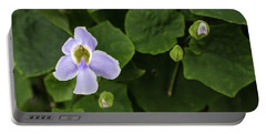 Portable Battery Charger featuring the photograph Orchids  by Jingjits Photography