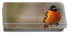 Oriole On The Line Portable Battery Charger