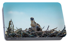 Portable Battery Charger featuring the photograph Osprey Chick Smiles For The Camera by Jeff at JSJ Photography