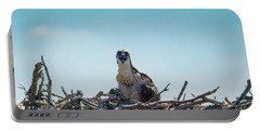 Osprey Chick Smiles For The Camera Portable Battery Charger