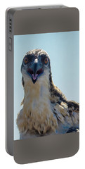 Portable Battery Charger featuring the photograph Osprey Chick Smiles For The Camera Ultra Macro by Jeff at JSJ Photography