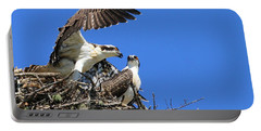Osprey Chicks Ready To Fledge Portable Battery Charger