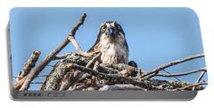 Osprey Eyes Portable Battery Charger by Paul Freidlund