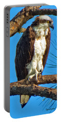 Osprey In Pine Portable Battery Charger