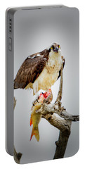 Portable Battery Charger featuring the photograph Osprey by Norman Hall