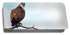 Portable Battery Charger featuring the photograph Osprey Out On A Limb by AJ Schibig