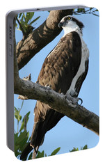 Portable Battery Charger featuring the photograph Osprey - Perched by Jerry Battle