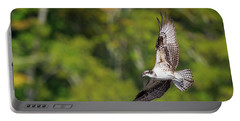 Osprey Square Portable Battery Charger by Bill Wakeley