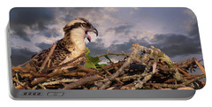Osprey Talk Portable Battery Charger