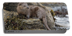 Otter Beside Loch Portable Battery Charger