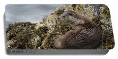 Otter Relaxing On Rocks Portable Battery Charger