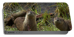 Otters Portable Battery Charger by Steve Stuller