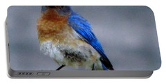Our Own Mad Blue Bird Portable Battery Charger by Betty Pieper