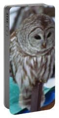 Our Own Owl Portable Battery Charger by Betty Pieper