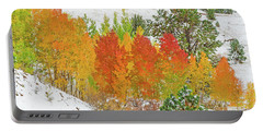 Our Winter Begins Around Mid October.  Portable Battery Charger