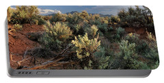 Out On The Mesa 7 Portable Battery Charger