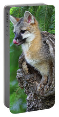 Out Pops A Gray Fox Portable Battery Charger