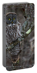 Over There- Great Gray Owl Portable Battery Charger