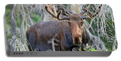 Portable Battery Charger featuring the photograph Overlooking Moose by Scott Mahon