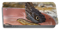 Owl Butterfly - 2 Portable Battery Charger