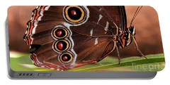 Owl Butterfly Portrait Portable Battery Charger
