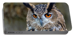 Portable Battery Charger featuring the photograph Owl Eyes by Cliff Norton