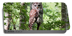 Owl In The Forest Portable Battery Charger
