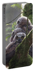 Owl Morning Portable Battery Charger by I'ina Van Lawick