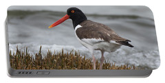 Oyster Catcher Portable Battery Charger