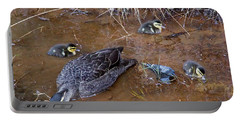Portable Battery Charger featuring the photograph Pacific Black Duck Family by Miroslava Jurcik