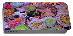 Pacific Ocean Reef Portable Battery Charger