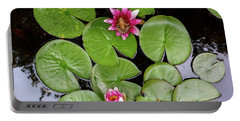 Pacific Tree Frog On Water Lily Flower Aerial View Portable Battery Charger