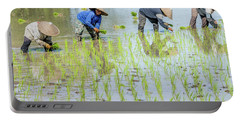 Paddy Field 1 Portable Battery Charger by Werner Padarin