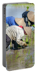 Paddy Field 2 Portable Battery Charger by Werner Padarin