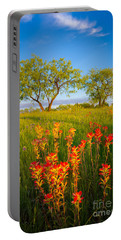 Paintbrush On Fire Portable Battery Charger