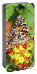Painted Lady 3 Portable Battery Charger