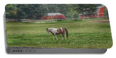 1005 - Painted Pony In Pasture Portable Battery Charger