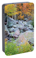 Portable Battery Charger featuring the photograph Painted Rocks by David Chandler