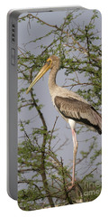 Painted Stork, India Portable Battery Charger