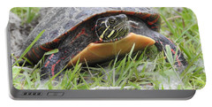 Portable Battery Charger featuring the photograph Painted Turtle by Betty-Anne McDonald
