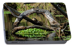 Portable Battery Charger featuring the photograph Painted Turtles by Paul Mashburn