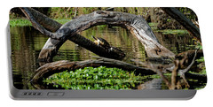 Painted Turtles Portable Battery Charger by Paul Mashburn