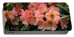 Portable Battery Charger featuring the photograph Painterly Rhododendron Grouping by Chris Anderson