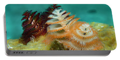 Portable Battery Charger featuring the photograph Pair Of Christmas Tree Worms by Jean Noren