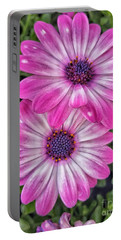Pair Of Daisys Portable Battery Charger