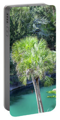 Portable Battery Charger featuring the photograph Palm Tree Blue Pond by Raphael Lopez