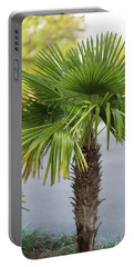 Portable Battery Charger featuring the photograph Palm Tree Just There by Raphael Lopez